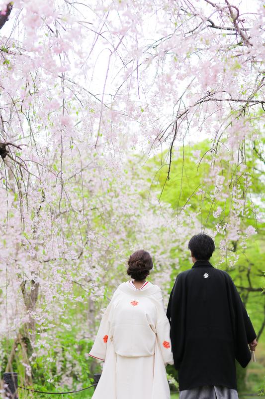 春の京都で、白無垢での前撮りをされた先輩花嫁さまをご紹介いたします。