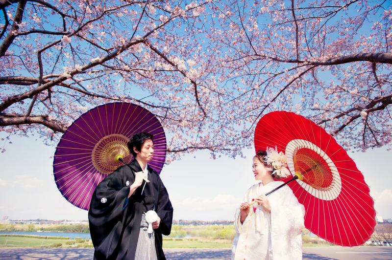 桜の中で白無垢で前撮りされた先輩花嫁さま